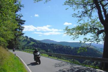 Südschwarzwald, überm Münstertal