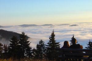 Nordschwarzwald mit Blick vom Schliffkopf zum Kandel